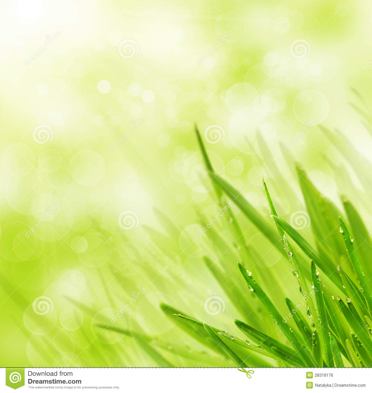 green spring background - photo #37