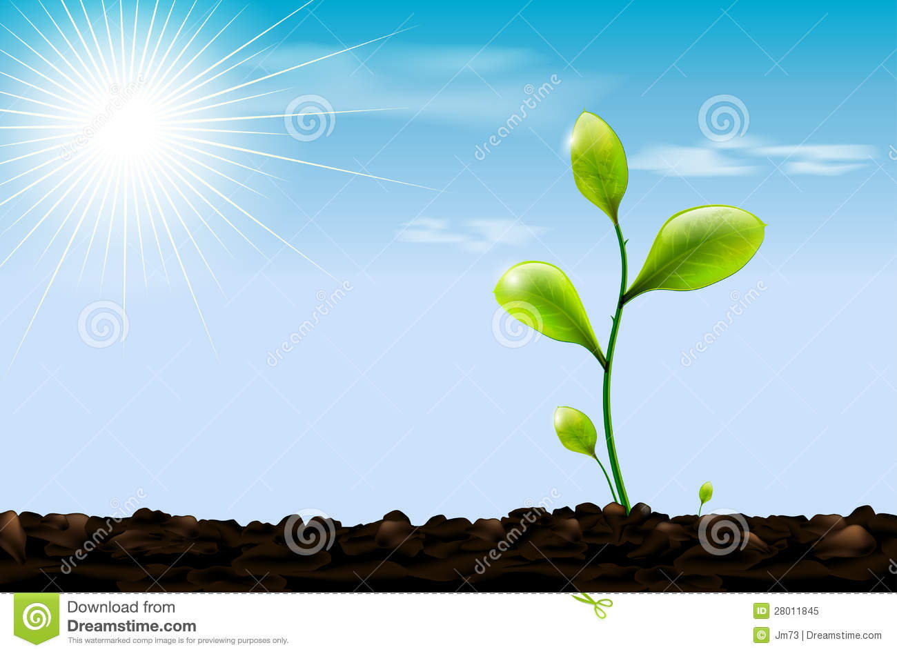 Green sprout soil and blue sky with sun royalty free for Soil and green