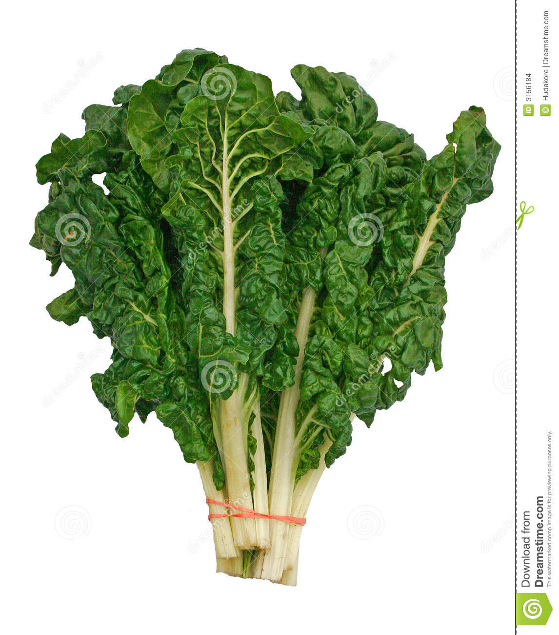 swiss chard Swiss chard (silverbeet) is one of the popular green leafy ...