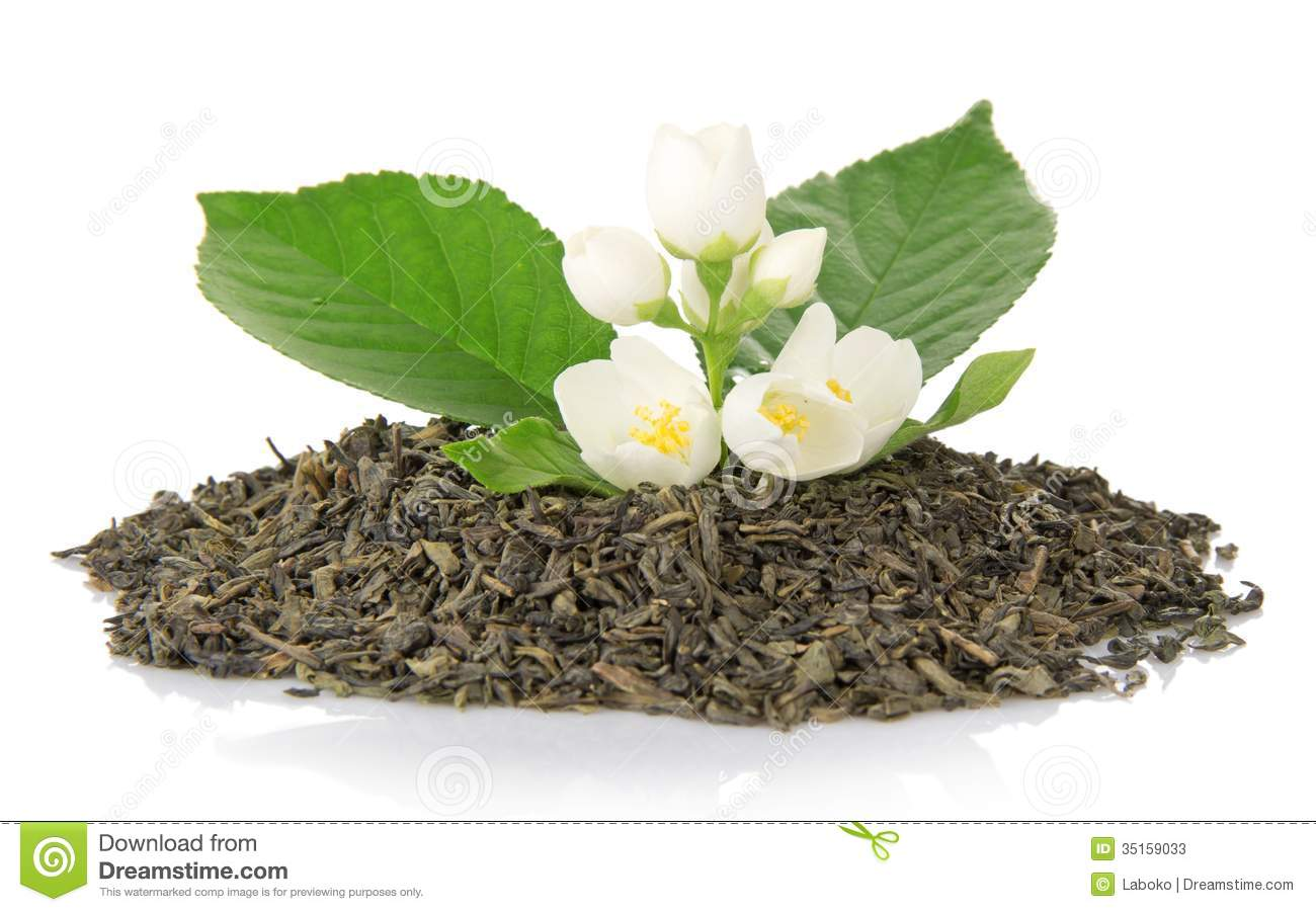 Green Tea With Leaf And Flowers Of Jasmine Stock Image Image Of