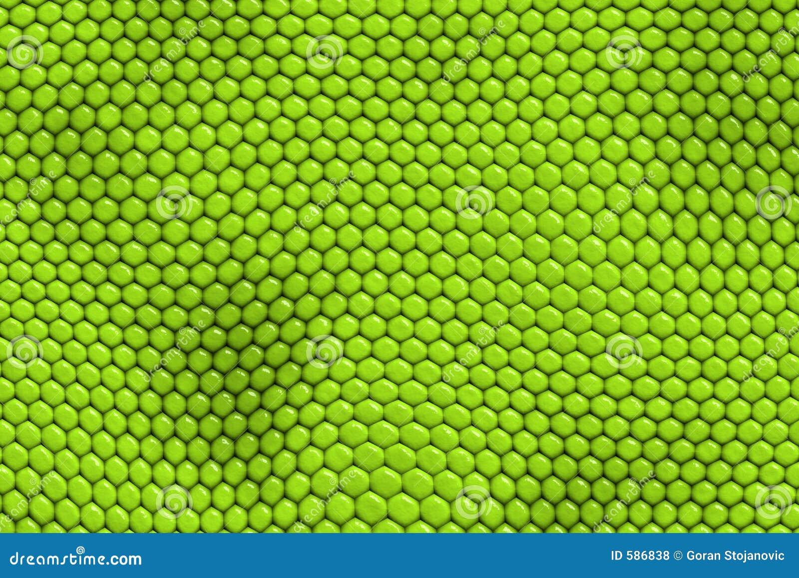 Green textured tło