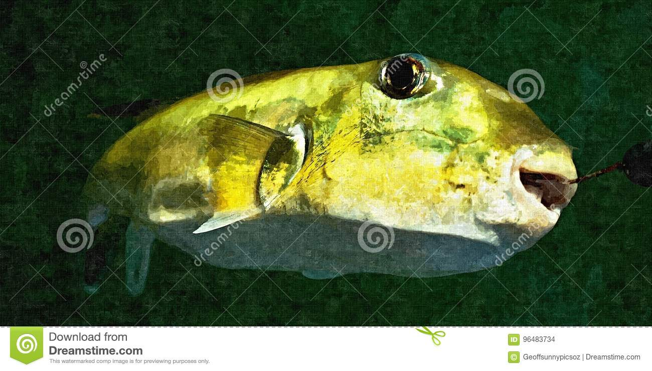 Green Toad Fish. Oil Painting Simulation Photo.