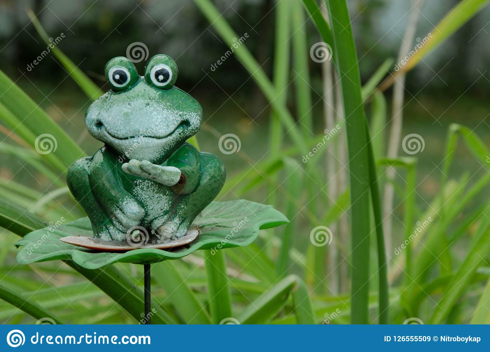 Green toy frog on grass background