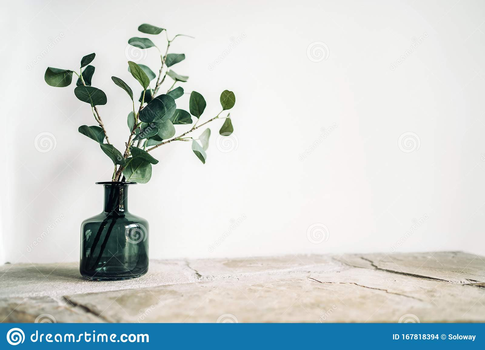 Green Tree Branch Putted Into Black Glass Vase On The Natural Stone Mantel Shelf On The White Color Wall Background Lit With Side Stock Photo Image Of Fireplace Fresh 167818394