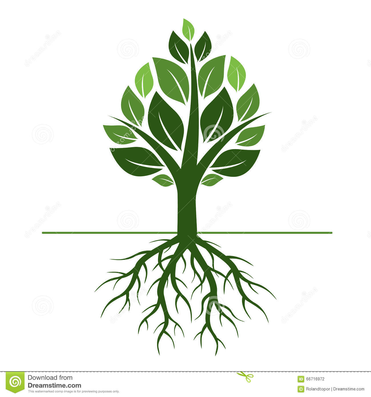 Green Tree And Roots. Vector Illustration. Stock Illustration ...