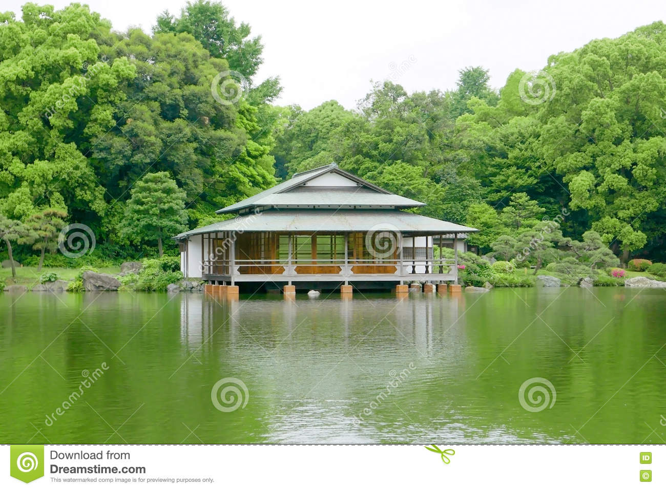 Green tree traditional japanese house garden and water for Japanese house garden