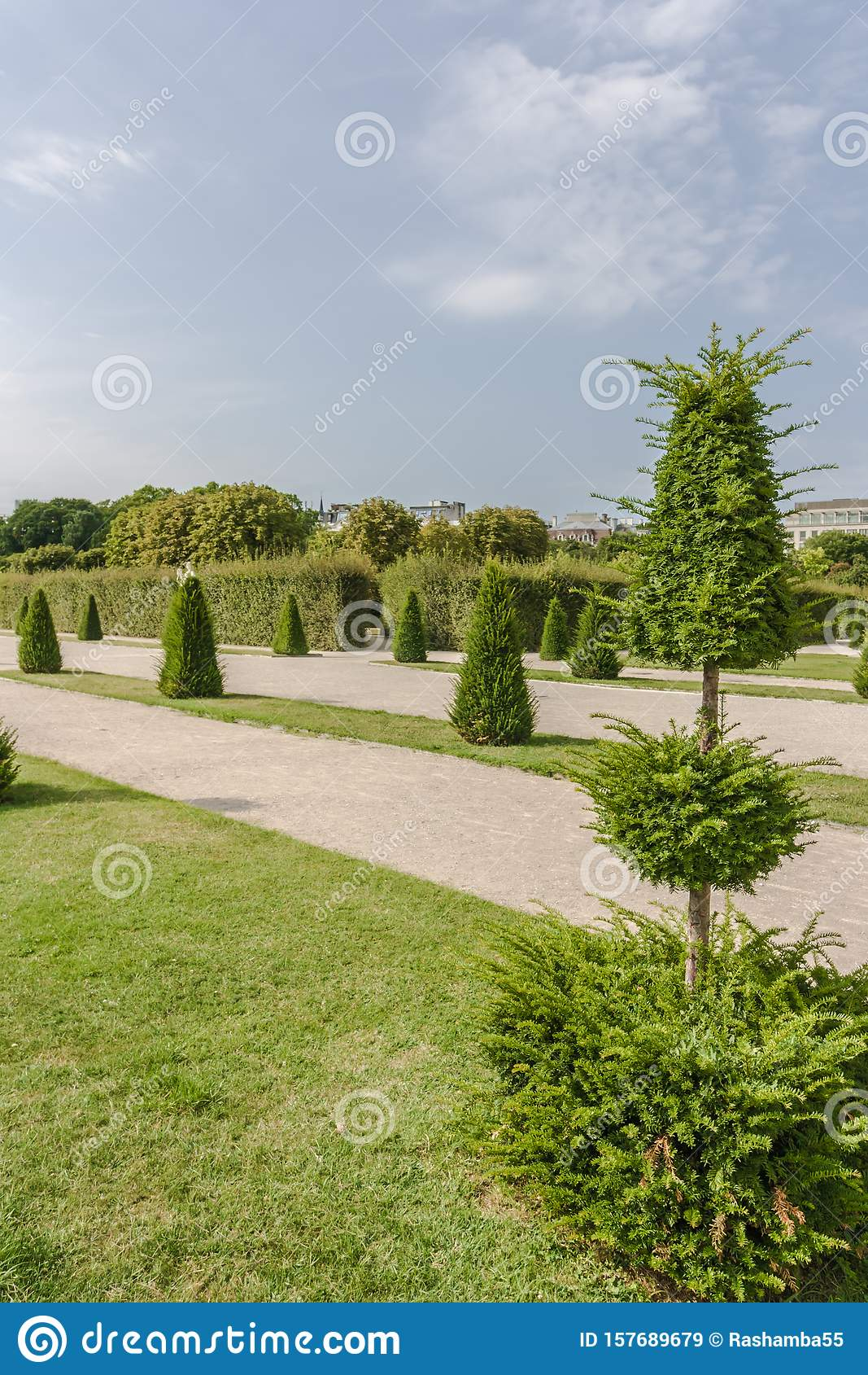Green Trimmed Trees In The Form Of Geometric Figures Topiary Tree Formal Garden Figure Evergreen Bush Stock Image Image Of Garden Design 157689679