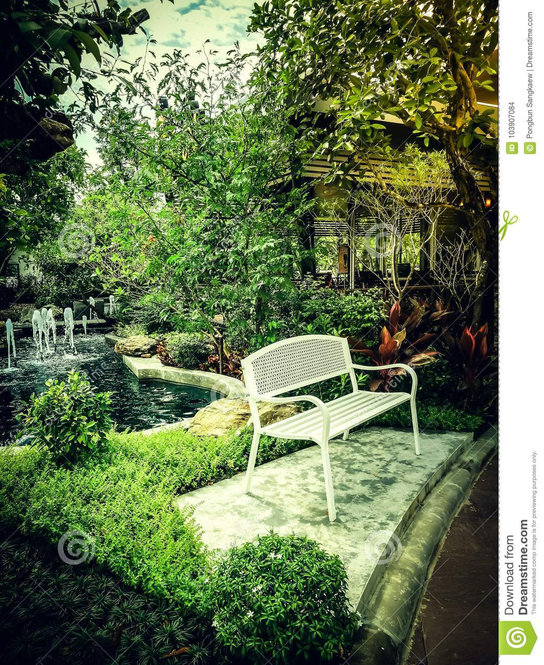 Admirable Green Tropical Plant Small Garden Decorate Stock Photo Gamerscity Chair Design For Home Gamerscityorg