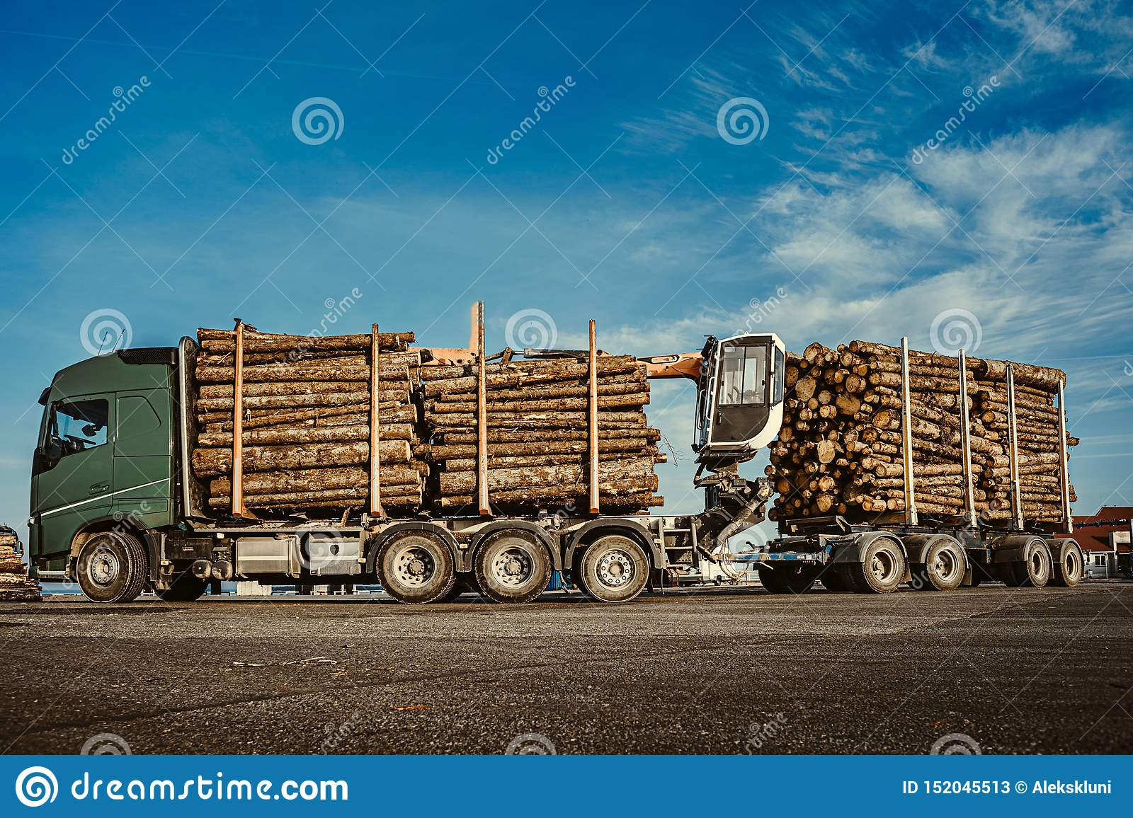Green truck carrying pulpwood to the cargo ship in the port. Summer time. Close up. Copy space