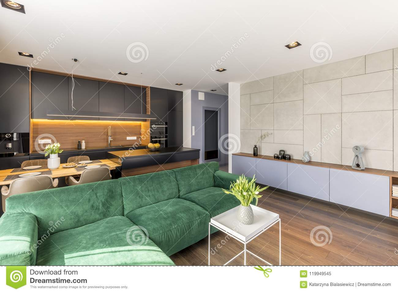 Velvet Couch Placed In Open Space Living Room And Kitchen
