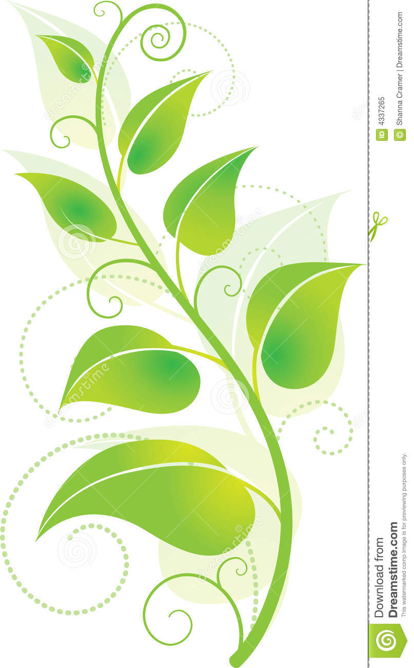 Green Vine stock vector. Illustration of environmental ...