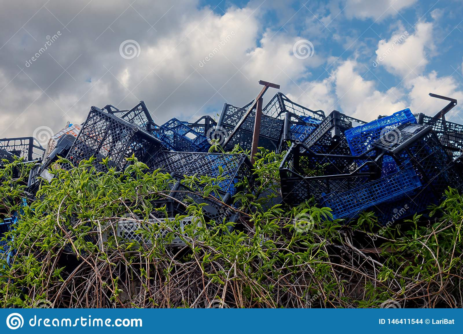 Green vines grow through blue plastic boxes in a landfill against a blue sky with clouds. The concept of hope