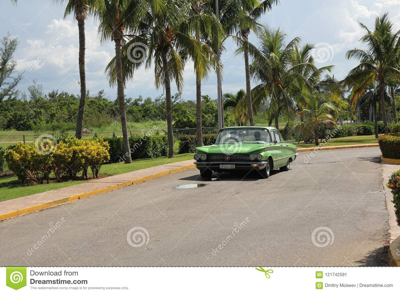 Green vintage American car rides along a row of tall palm trees