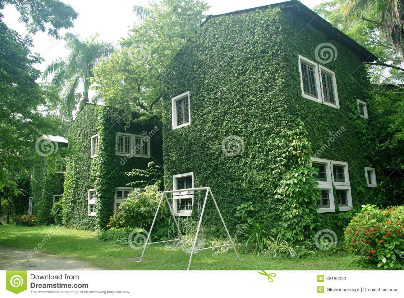 Green Wall On Building Stock Photo Image Of Green