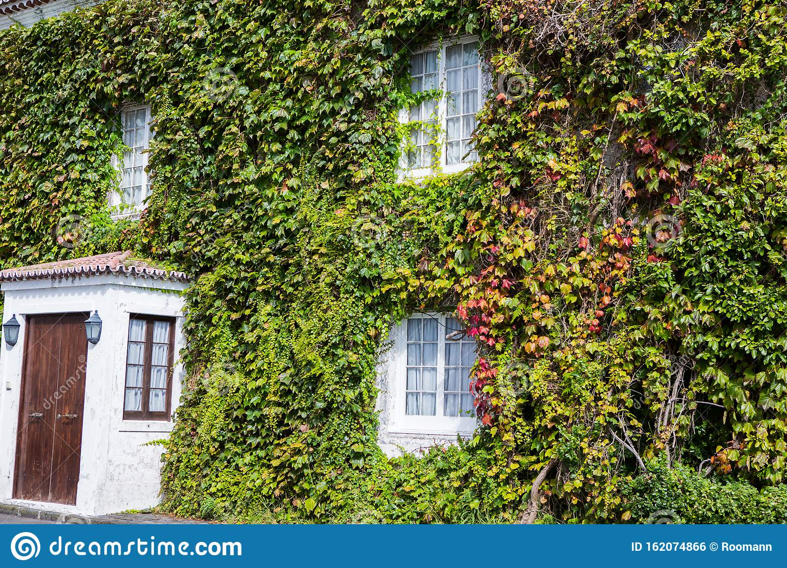 Green Wall In A Sustainable Building With Vertical Garden In The