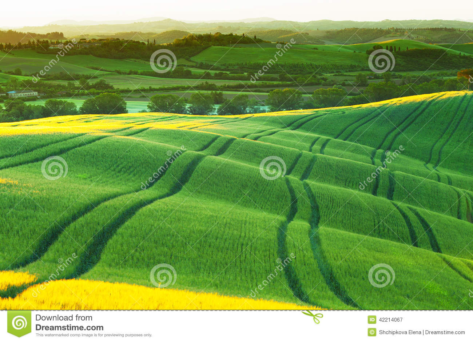 Italian green hills stock photo 92627448 for Green italy