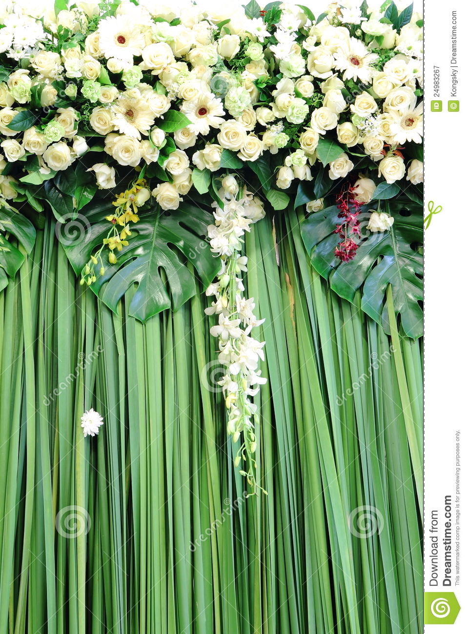 Green And White Backdrop Flowers Stock Image Image 24983267