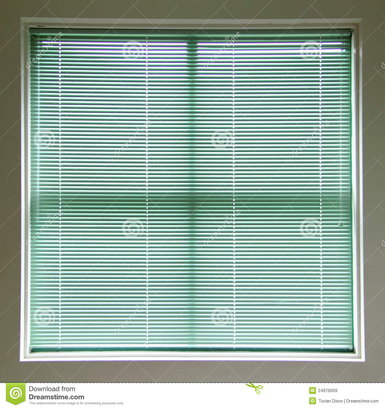 Blinds Green Square Window