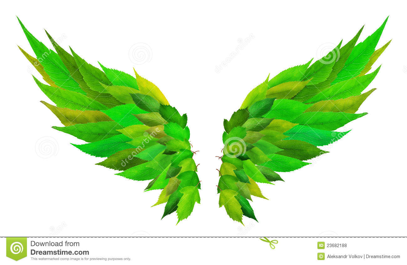Green Wings Concept Royalty Free Stock Photos - Image: 23682188