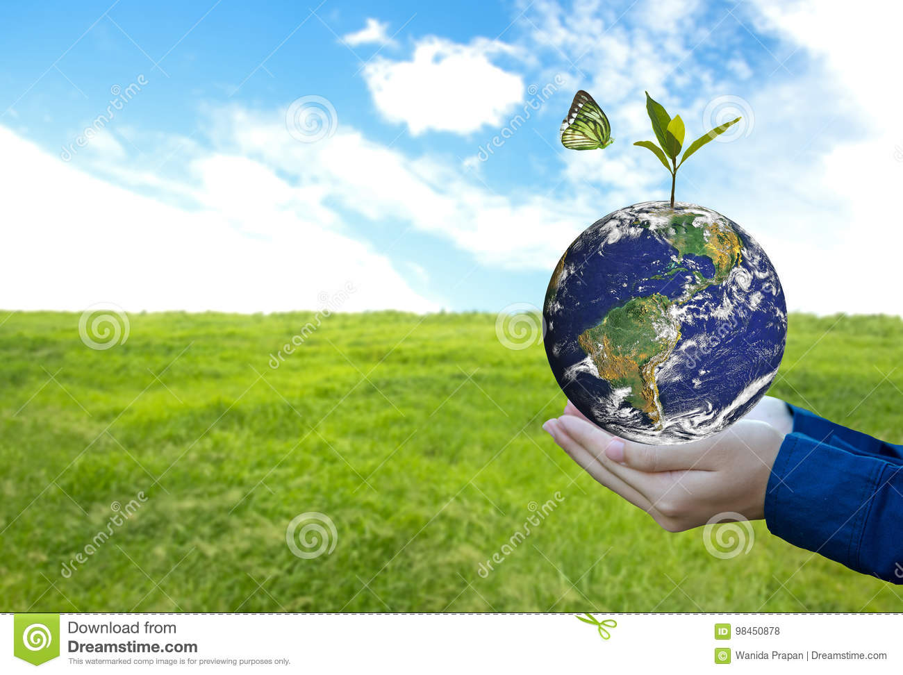 Green world with butterfly and leave in man hand, green background,