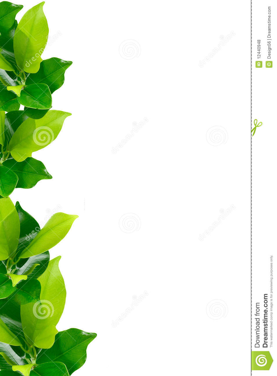 Green Young Plant Border Royalty Free Stock Photos Image 12440948