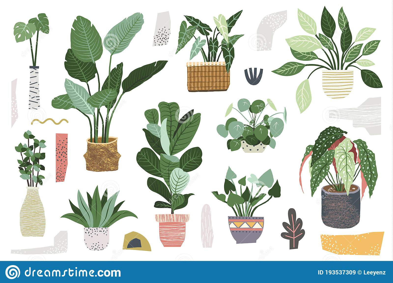 Greenery Indoor House Plant Collections Stock Vector Illustration Of Garden Floral 193537309
