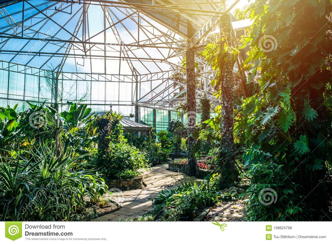greenhouse for conservation and education stock photo image of