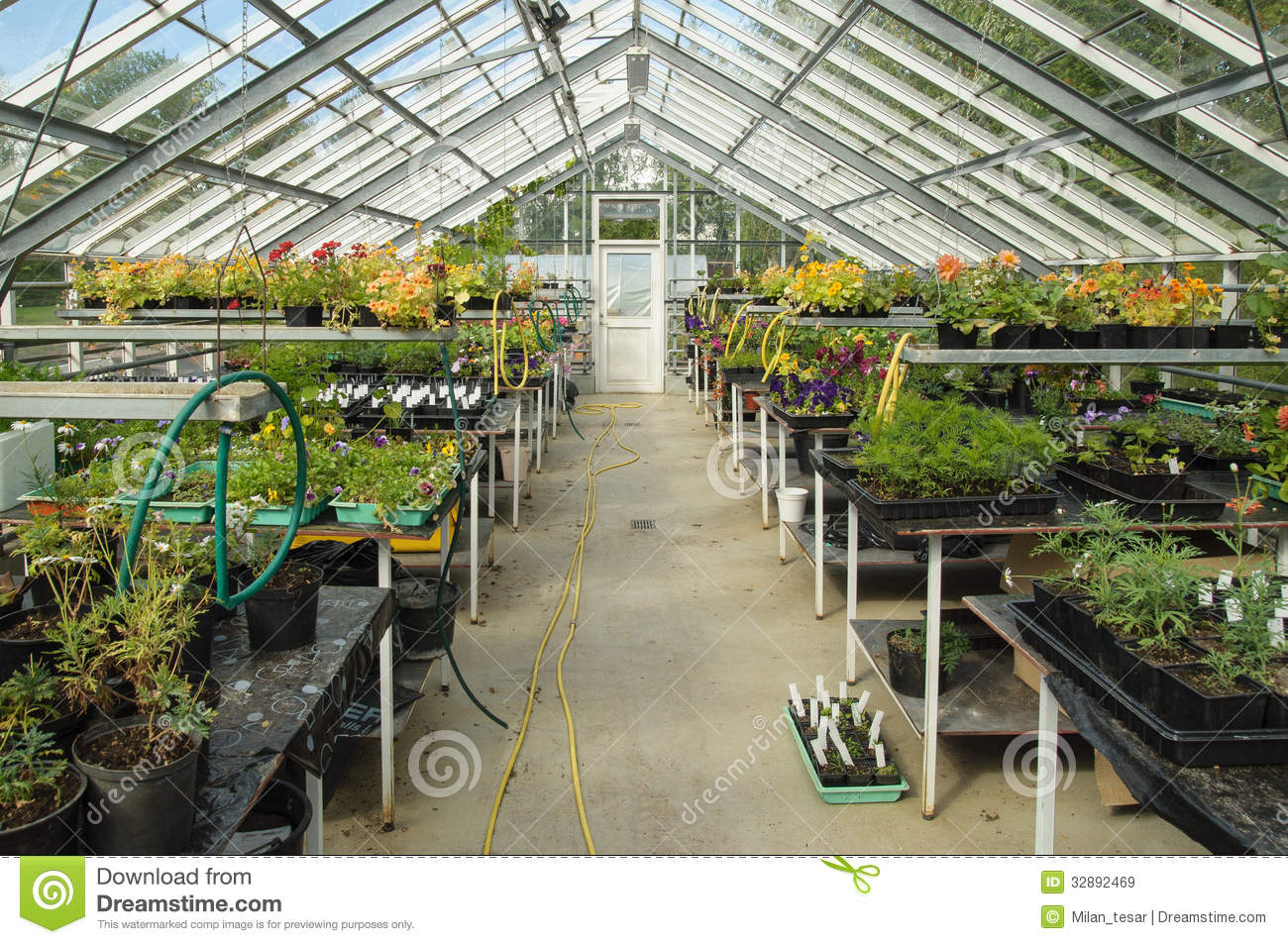 Greenhouse in iceland stock image image of garden hose for Botanical garden timing