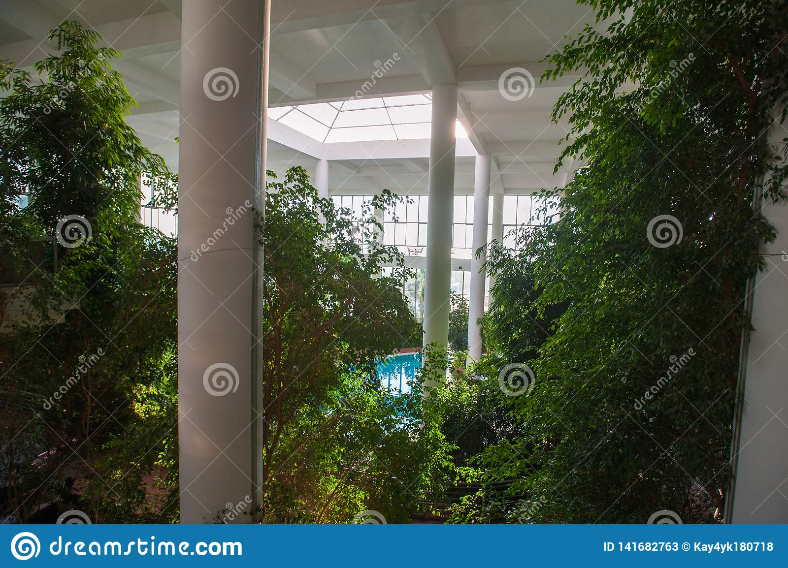 Greenhouse inside the building, with a pool inside among the vegetation