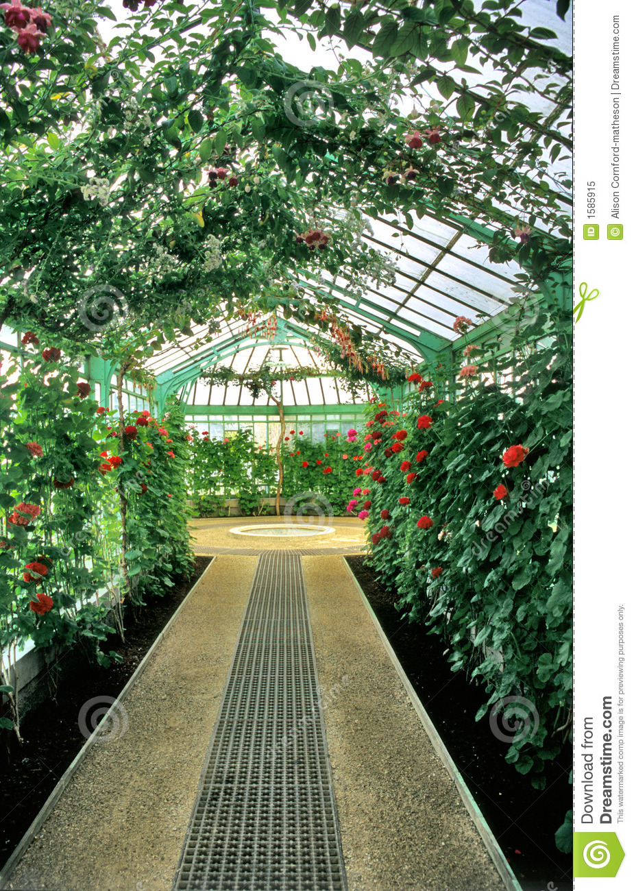 Greenhouse Interior Stock Image Image Of Bloom Landmark