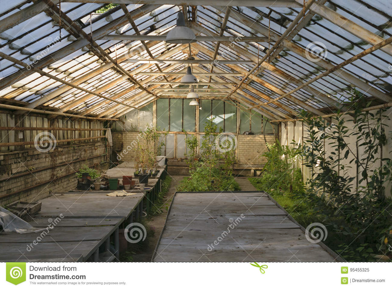 Surprising Greenhouse Stock Image Image Of Room System Crop Flora Complete Home Design Collection Barbaintelli Responsecom