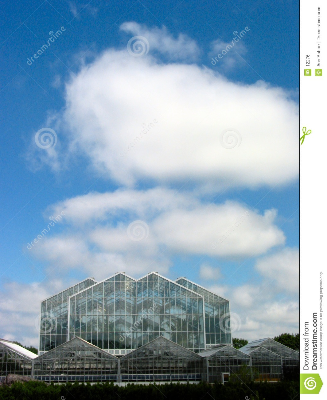 Greenhouse and The Sky – 3
