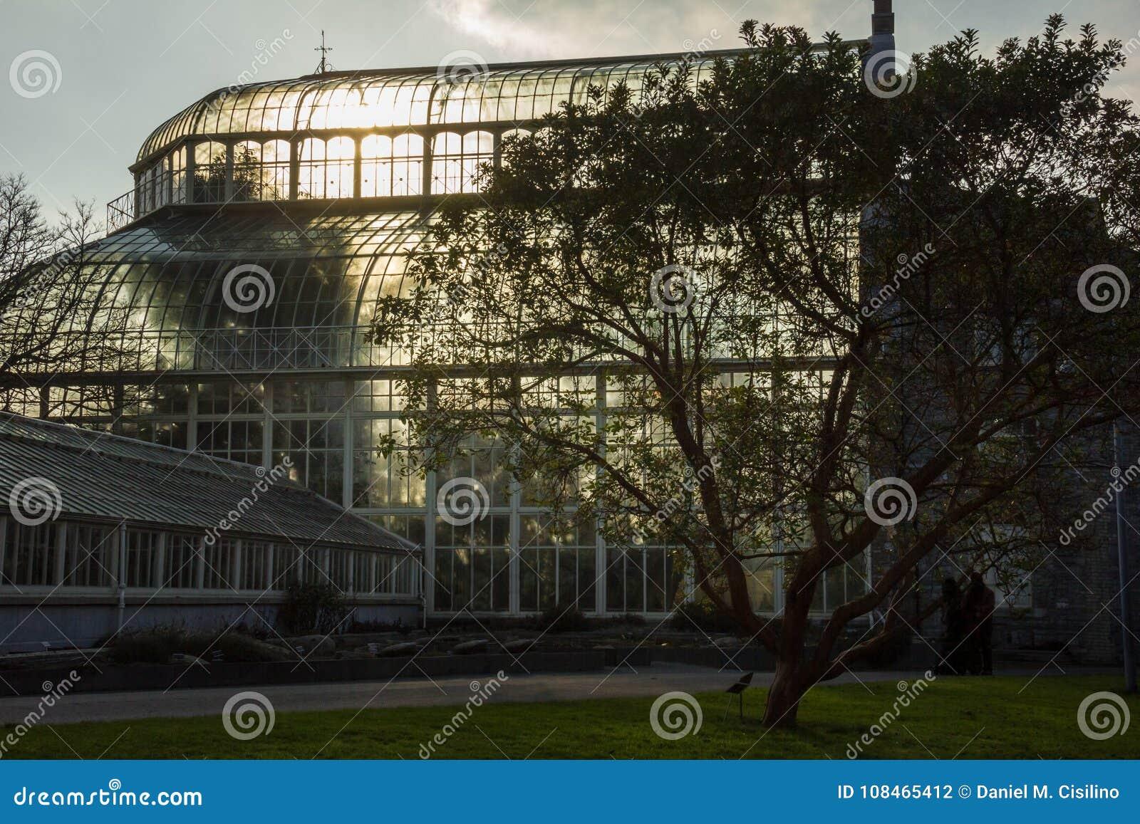 Greenhouse. National Botanic Gardens. Dublin. Ireland Stock Photo ...