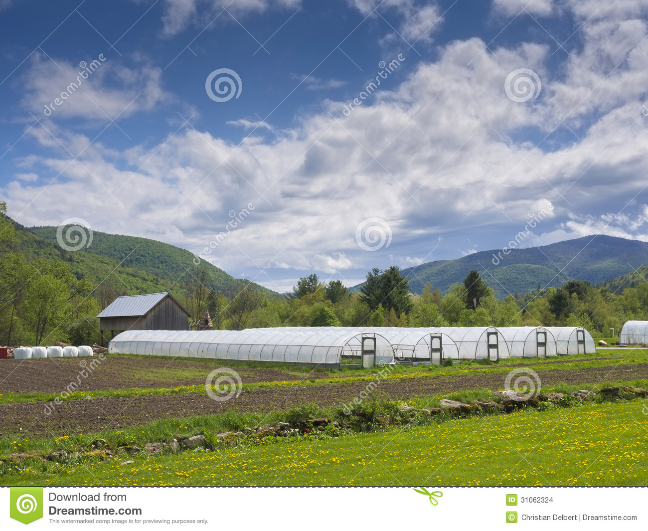 Greenhouses in countryside stock images image 31062324 Usa countryside pictures