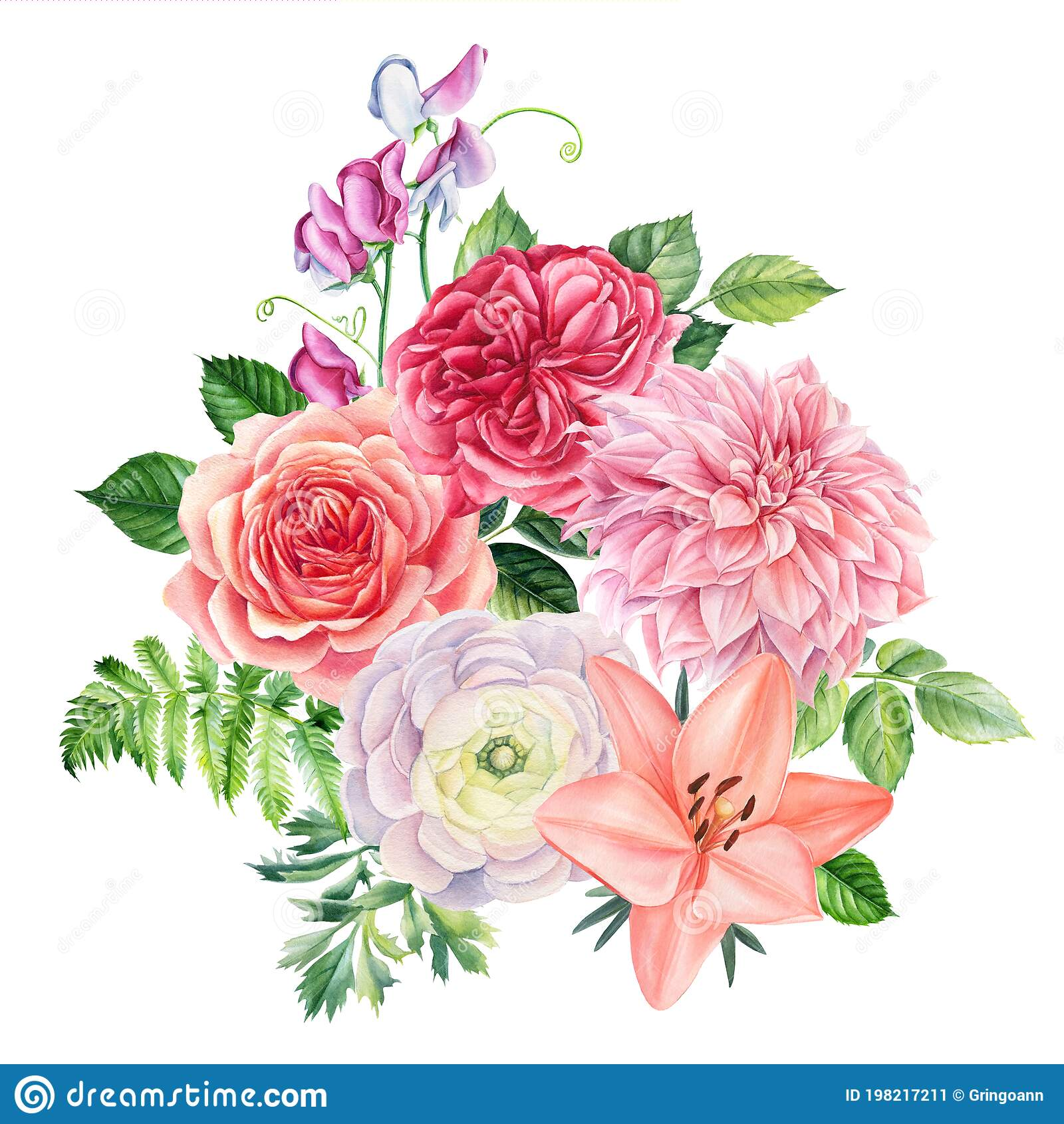 Drawings Roses Stock Illustrations 491 Drawings Roses Stock Illustrations Vectors Clipart Dreamstime