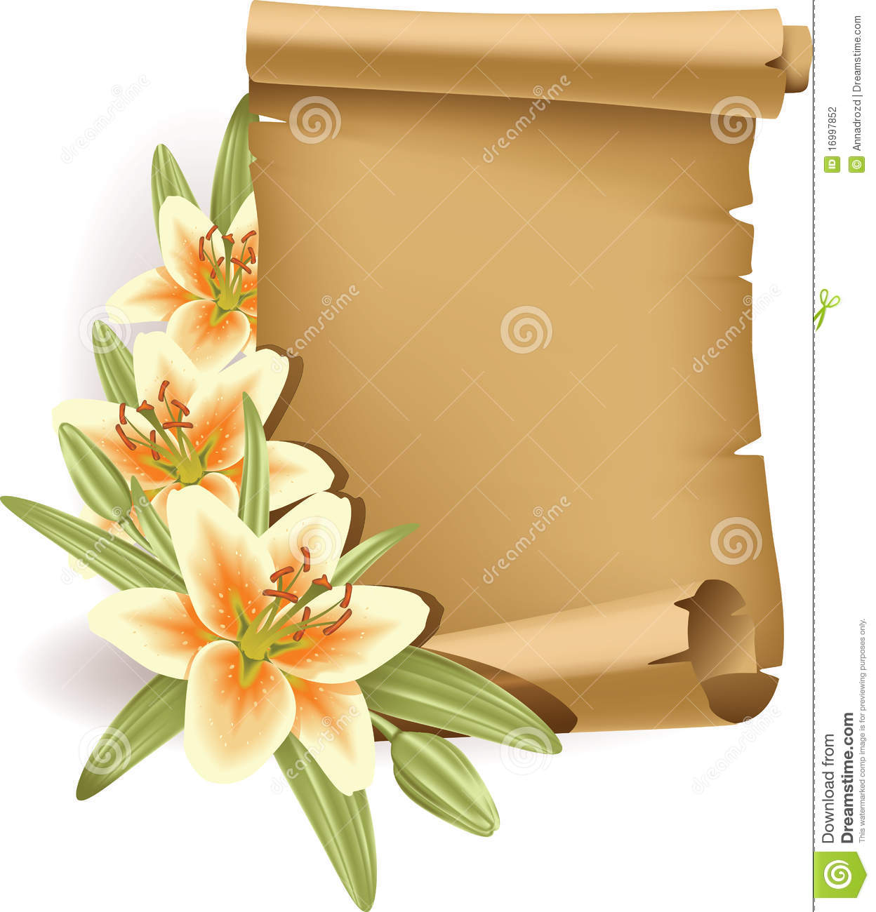 Greeting Card With Lilies And Scroll - Vertical Stock ...