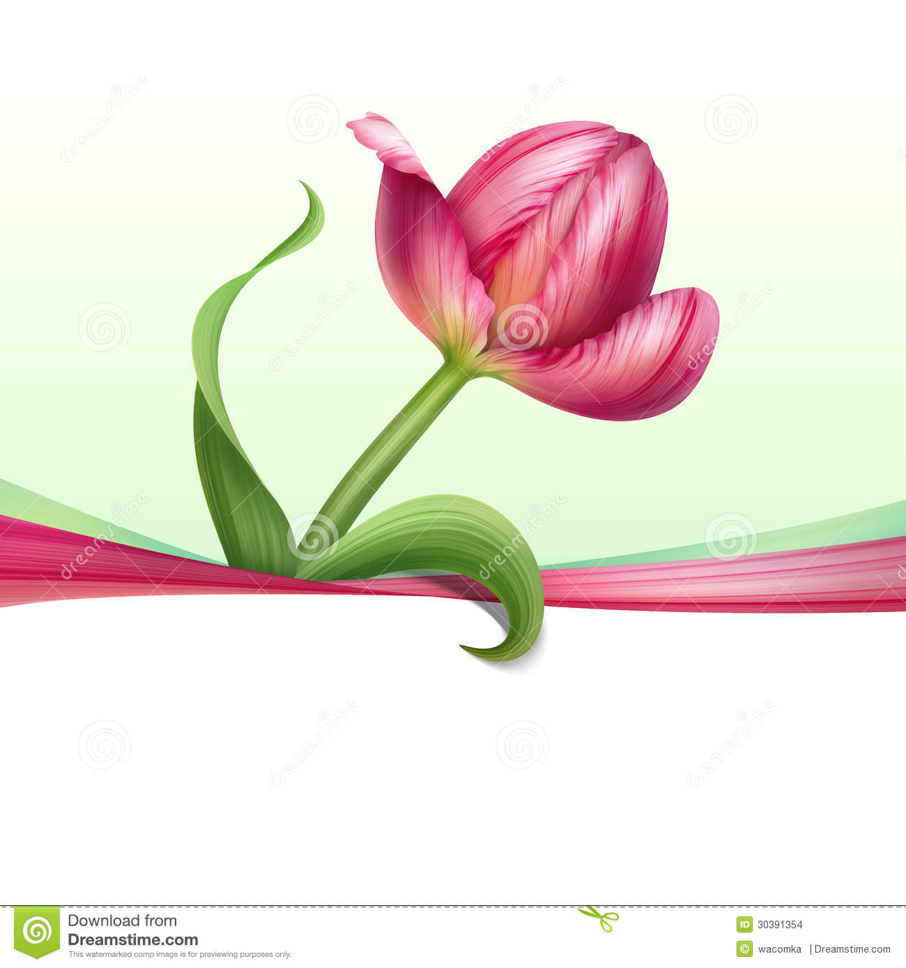 Greeting Card With Realistic Pink Tulip Flower Stock ...