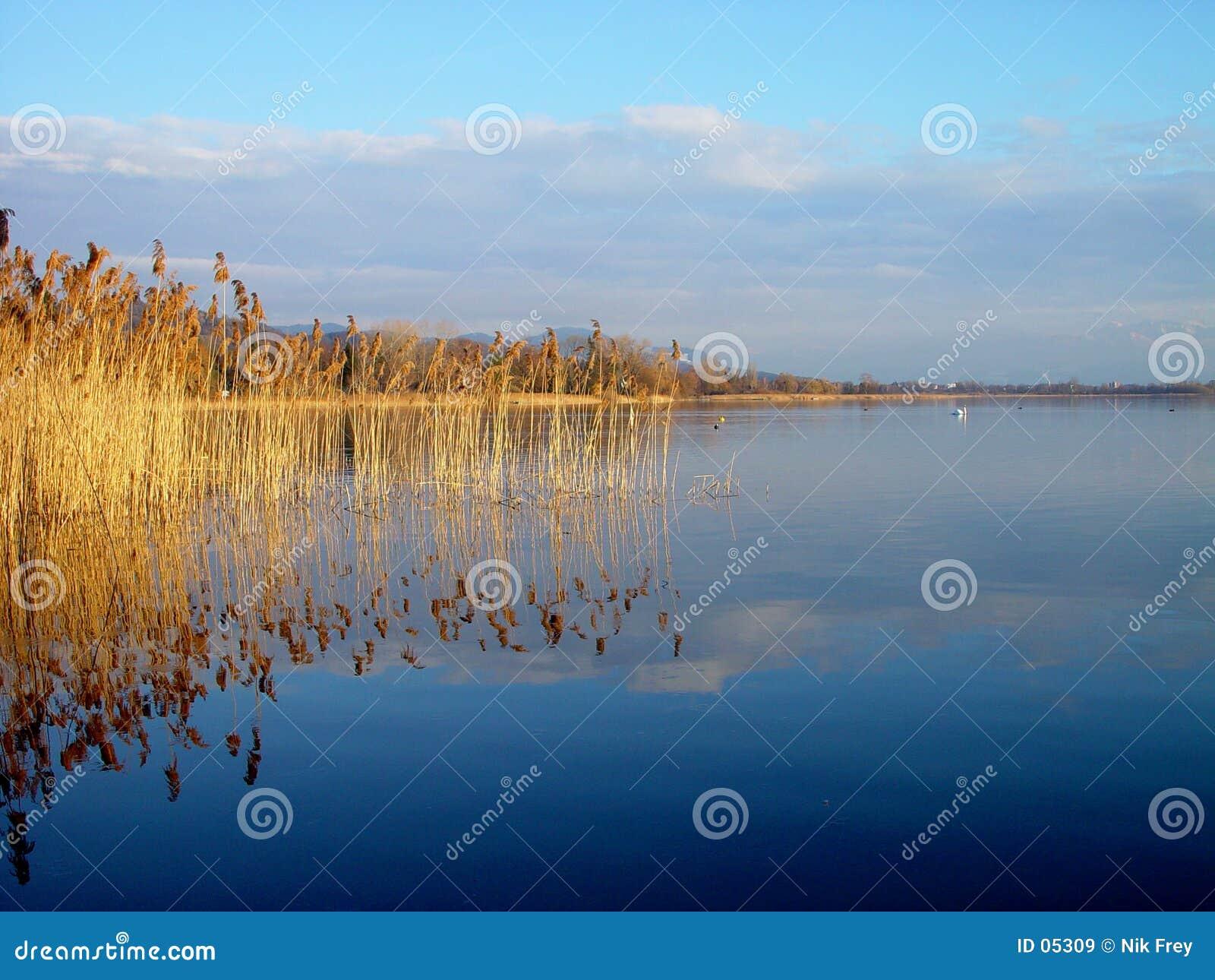 Greifensee jeziora