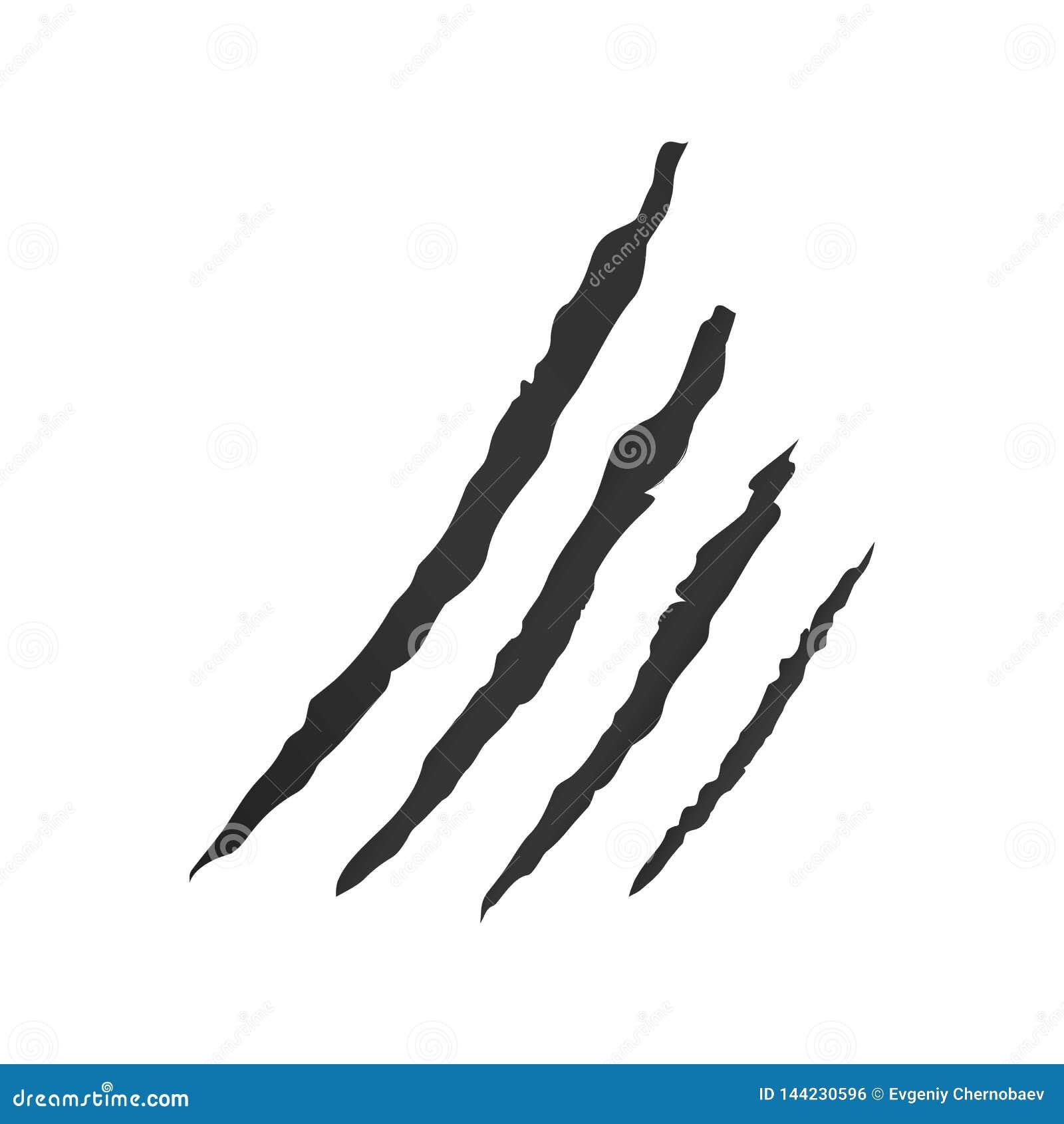 Greiferkratzervektor, Tiergreiferkratzer Drucke oder Greiferkennzeichen auf einem weißen Hintergrundvektor eps10