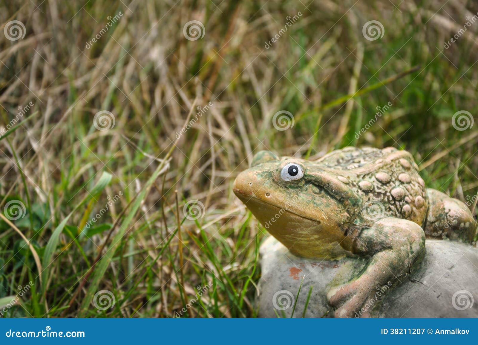 Grenouille en pierre sur une herbe et regarder l appareil-photo