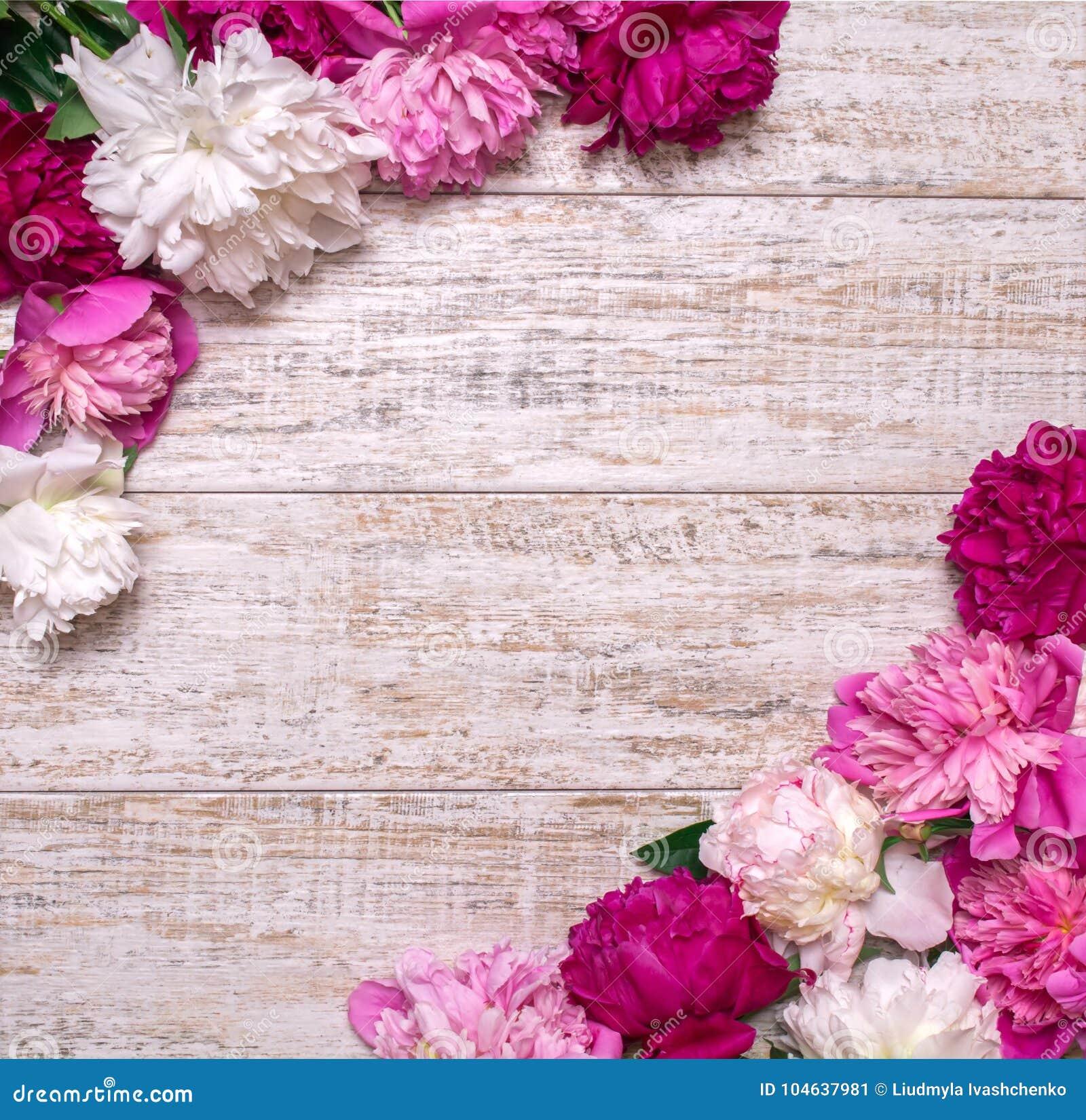 Download Grens Van Pioenen Op Een Houten Achtergrond Met Lege Ruimte Voor Tekst Bloemen Ontwerp? Achtergrond, Achtergrond, Illustratie Stock Afbeelding - Afbeelding bestaande uit art, bloesem: 104637981