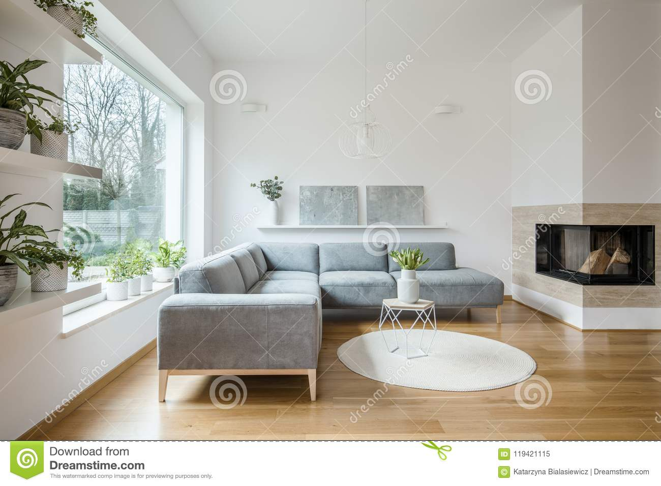 Grey corner lounge standing in white living room interior with two modern art paintings on the shelf, fireplace and tulips on smal