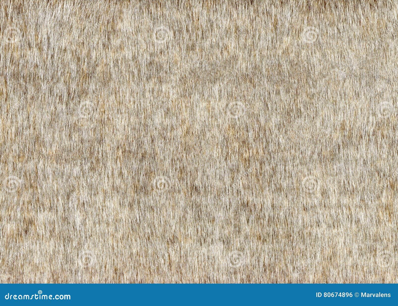 Grey Faux Fur Background Texture
