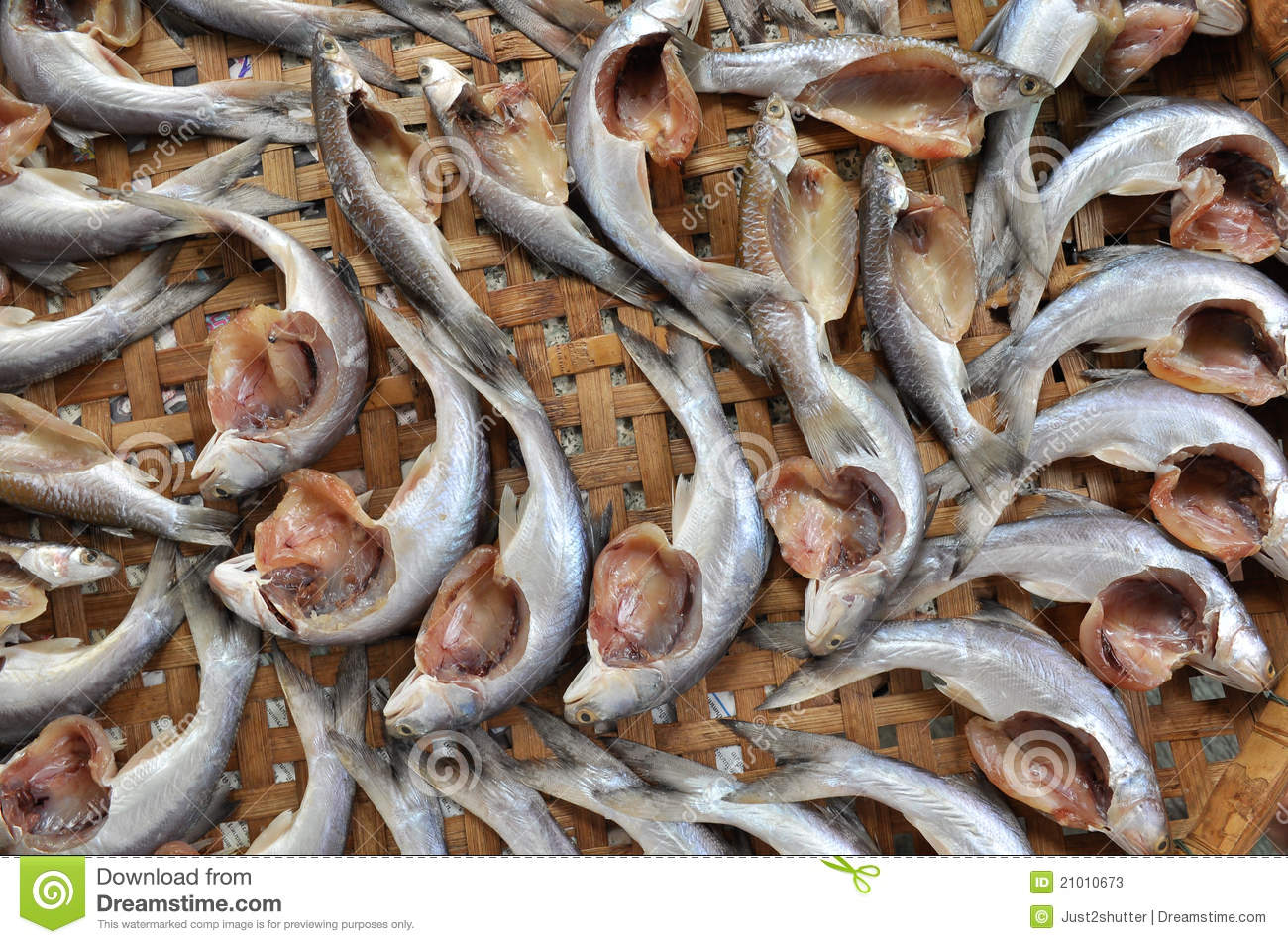 Grey mullet fish stock image image of fresh health for Eating mullet fish