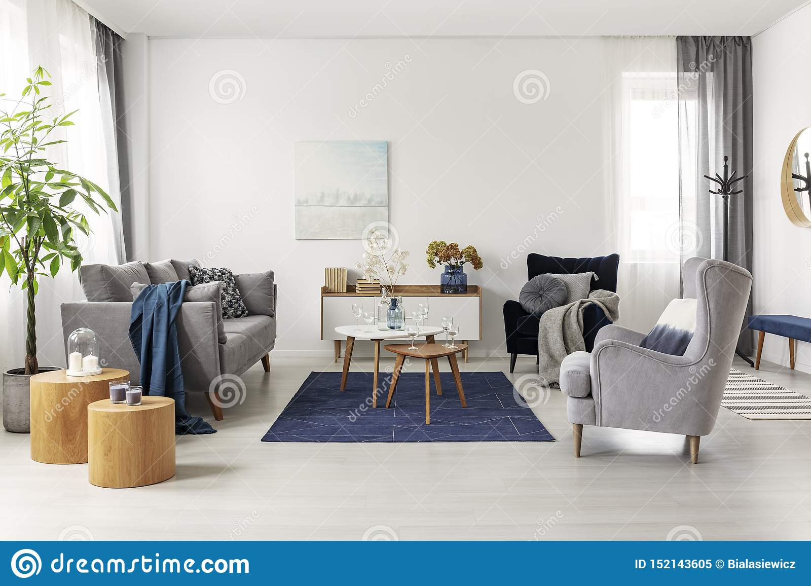 Grey And Navy Blue Living Room Interior With Comfortable ...