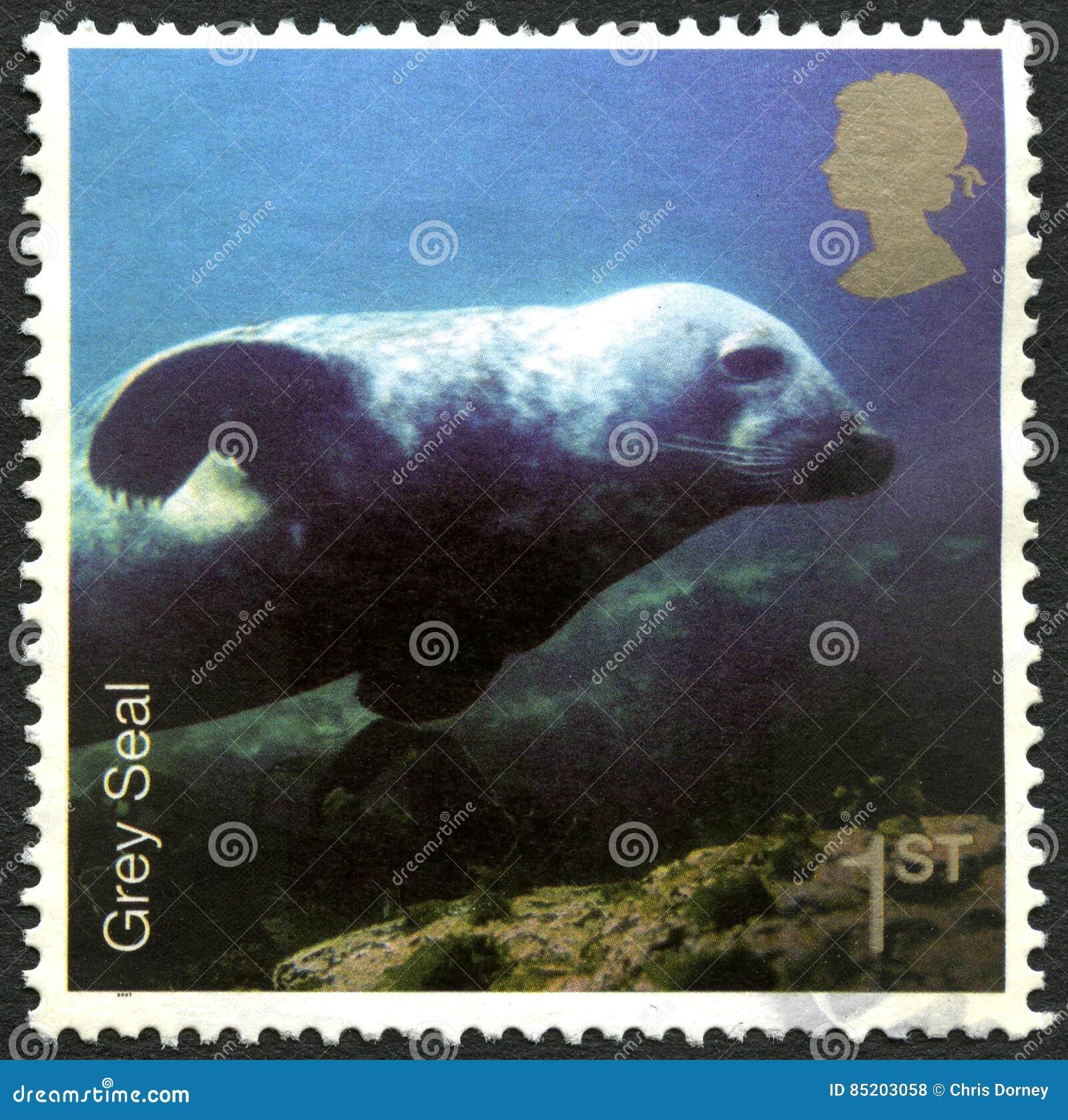 Grey Seal Uk Postage Stamp Editorial Stock Photo Image Of