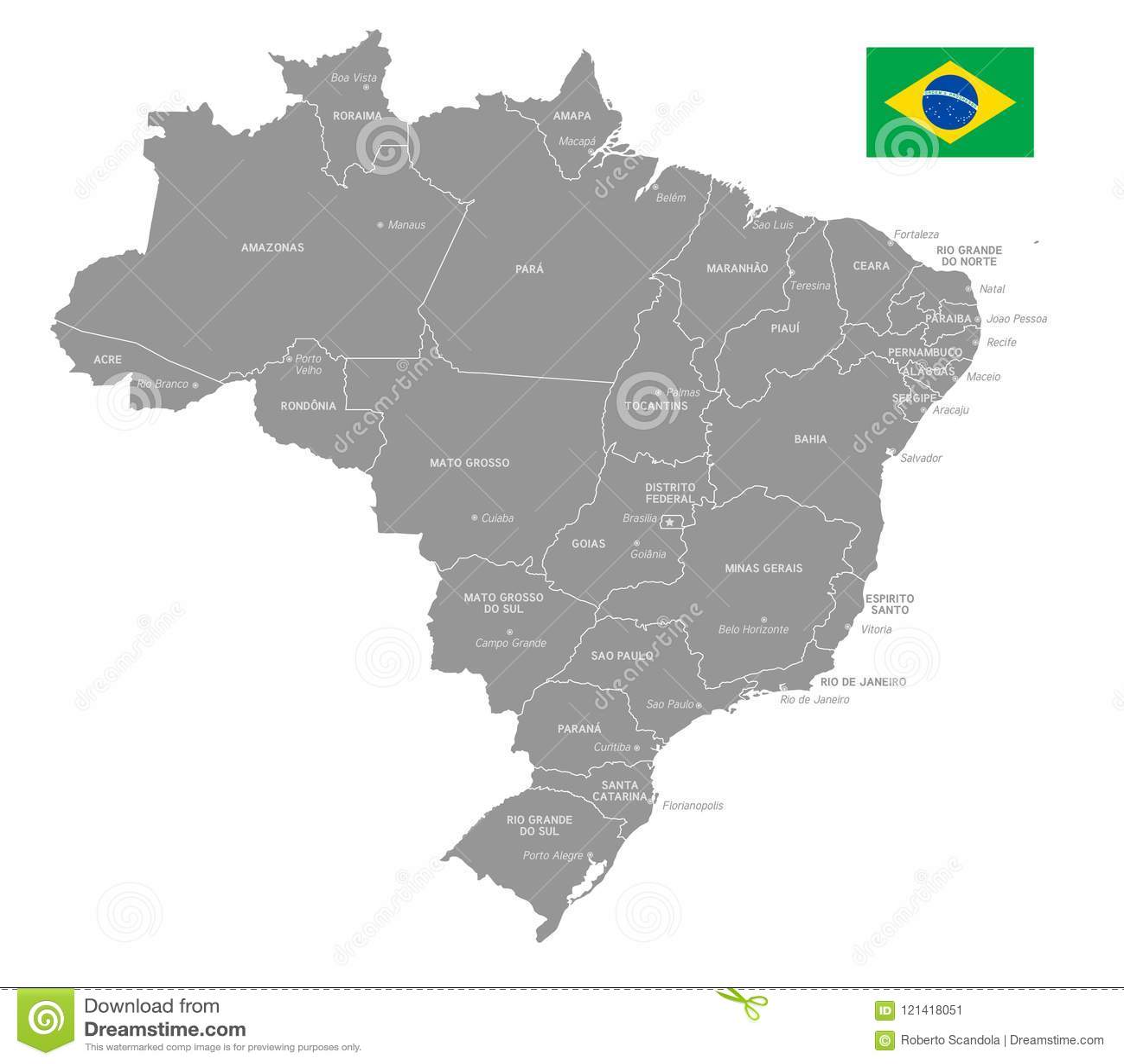 Grey Vector Political Map Of Brazil Stock Vector Illustration Of