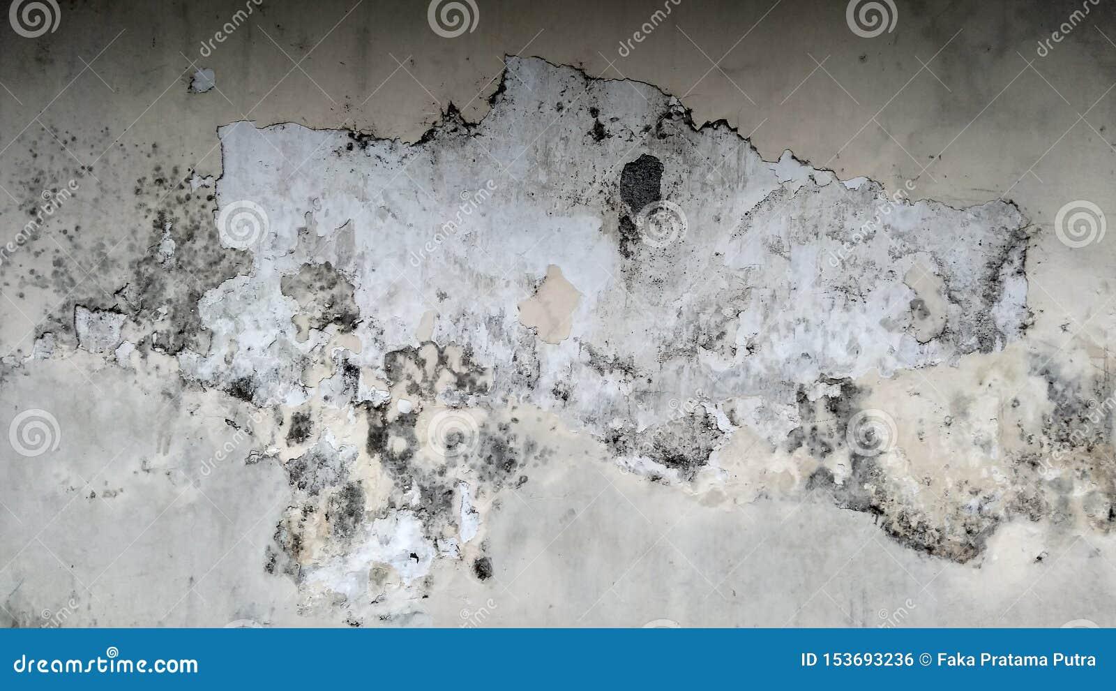 Grey Wall met Grunge-Textuur