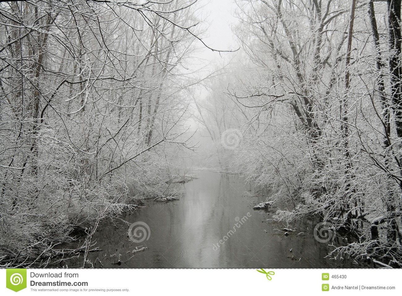 Grey Winter
