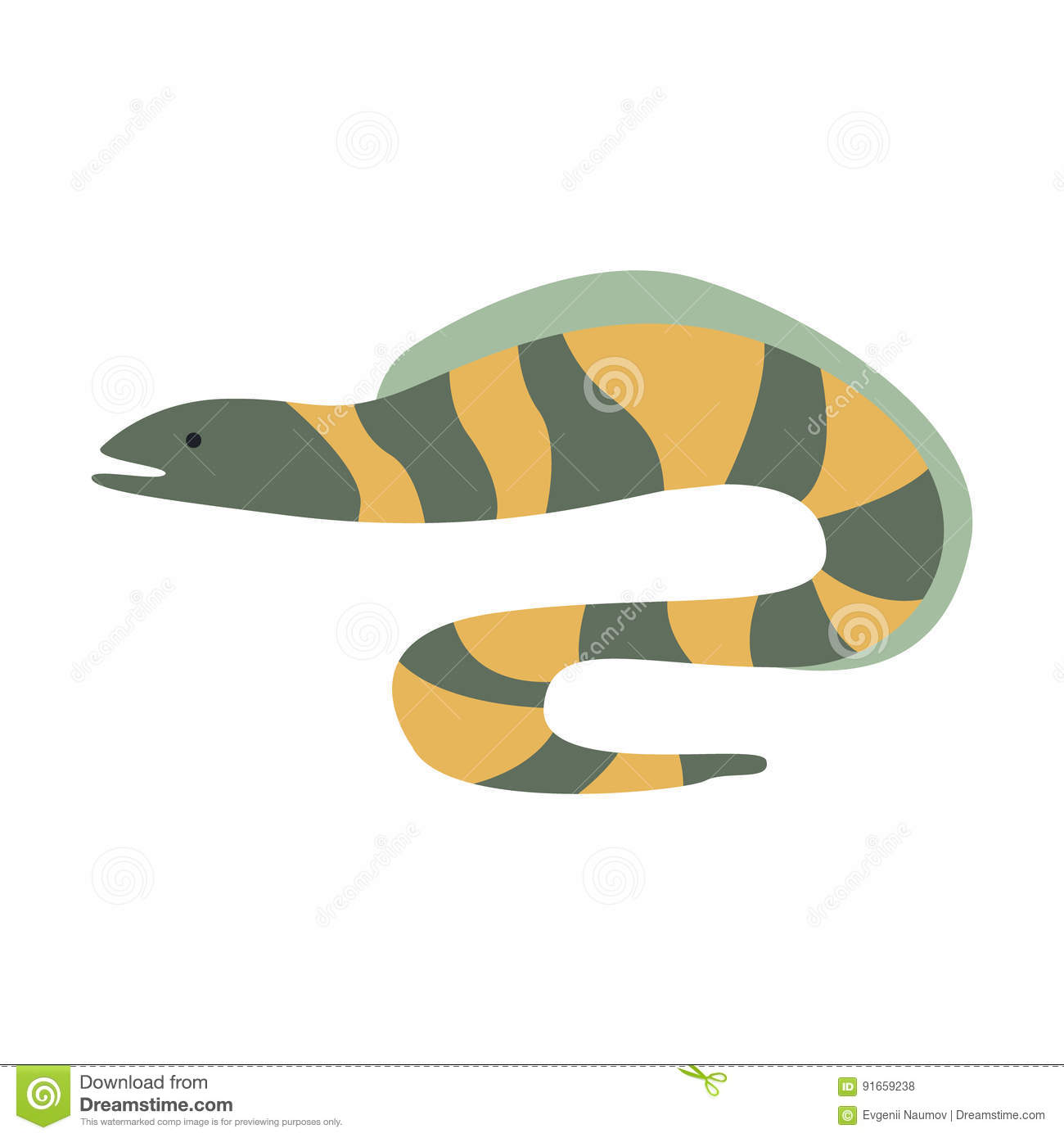 Grey And Yellow Stripy Moray-Paling, een Deel van de Illustratiesreeks van Marine Animals And Reef Life van de Middellandse Zee